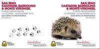 Castagne e Bardolino